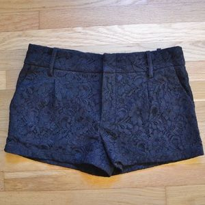 ⭐️JUST IN⭐️ Black Lace Shorts